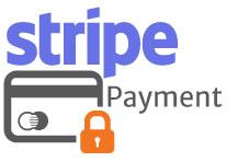 stripe payment logo2