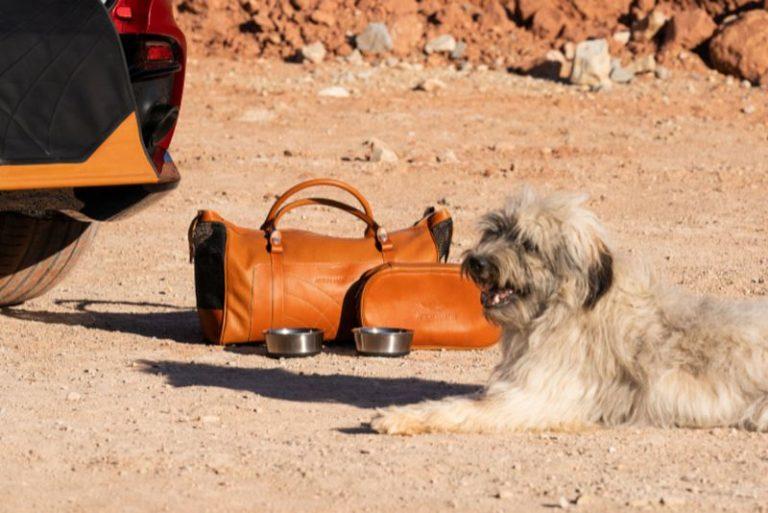 BN AstonMartin DBX dog accessory kiy