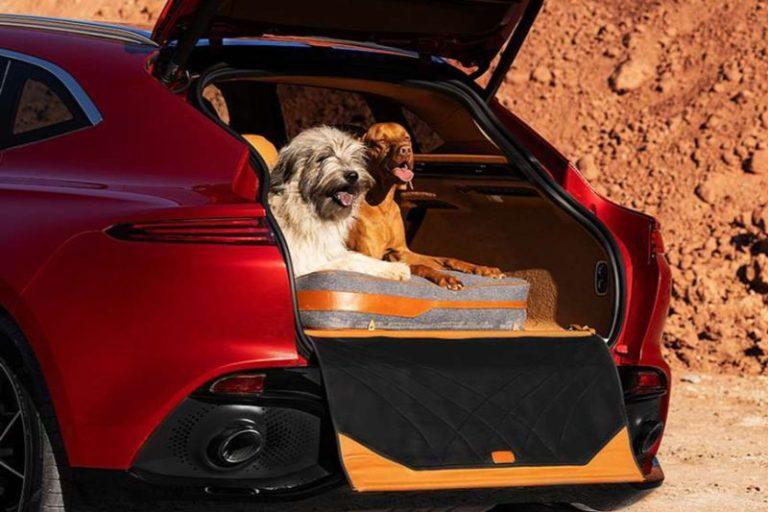 BN AstonMartin DBX petpack
